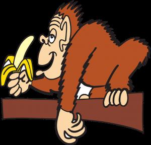 バナナを持ってとぼけた猿